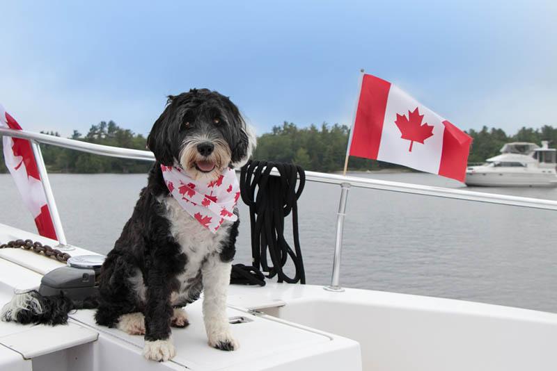 Transport Canada marine registration